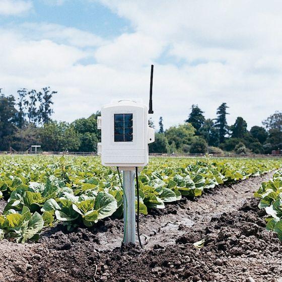 Trådløs blad og jordfugtigheds/temperatur station